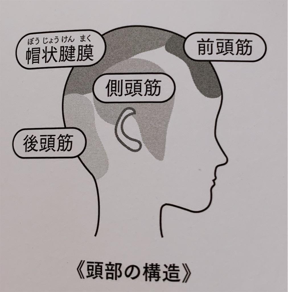 f:id:sayakayama73:20200806131644j:image