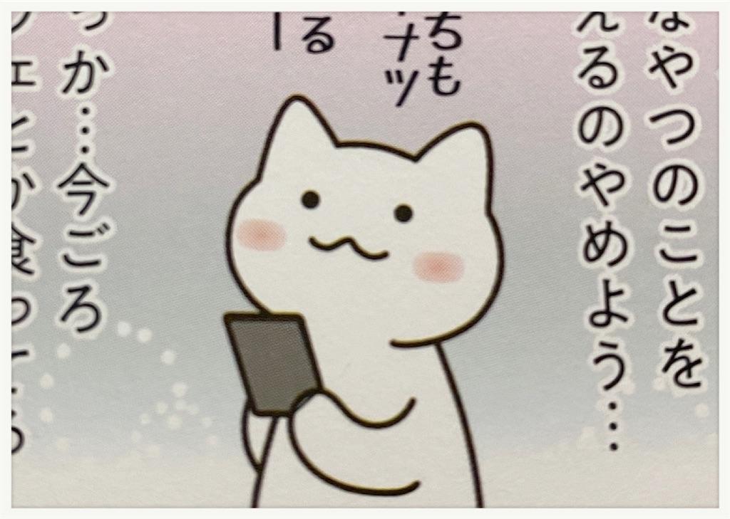 f:id:sayamaruroom:20200421082500j:image
