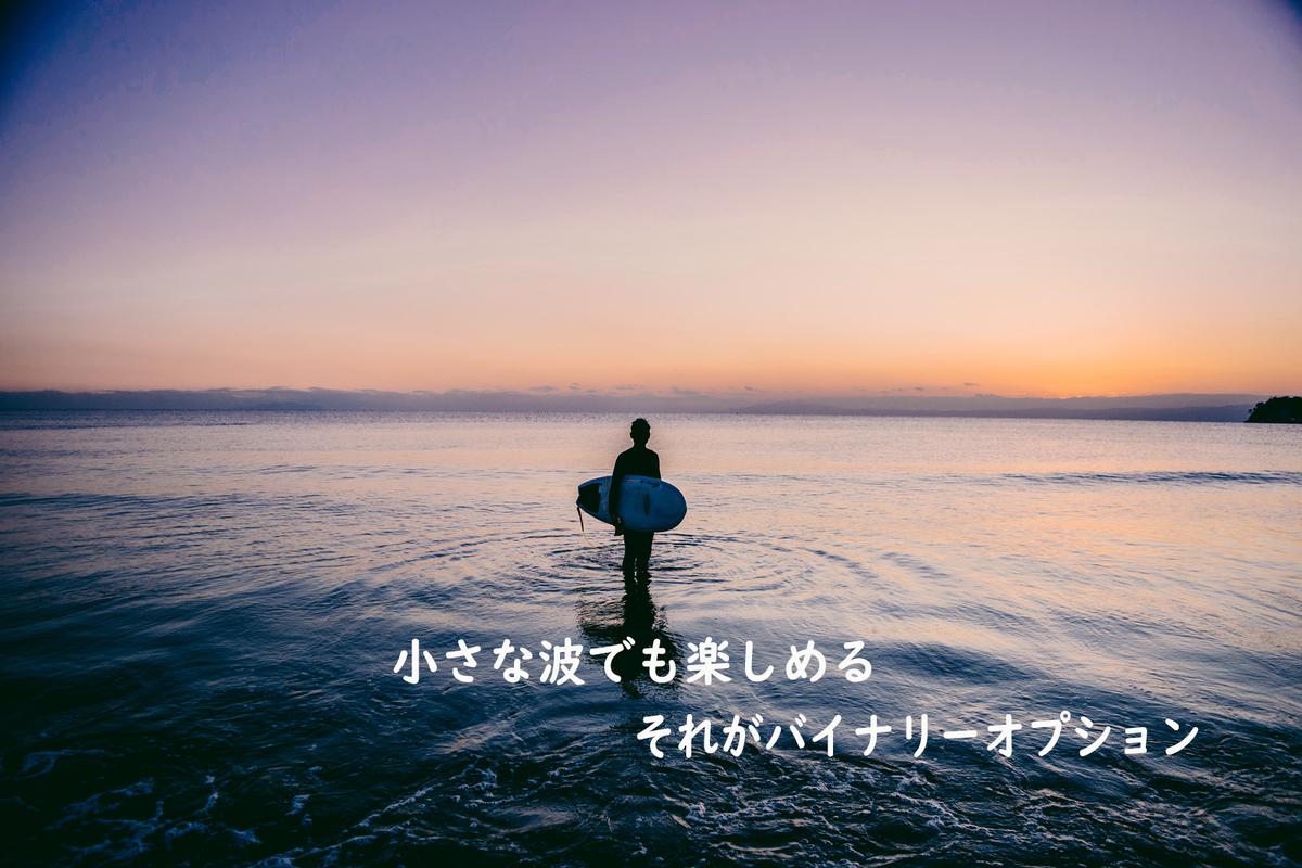 f:id:sayamashirou:20190507191207j:plain