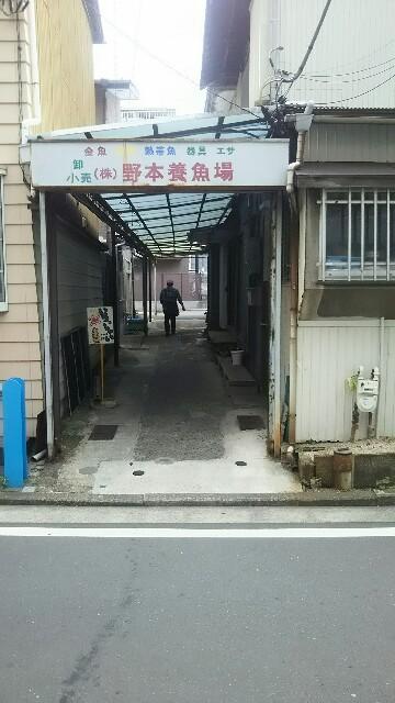 f:id:sayanokuni:20170507130637j:image