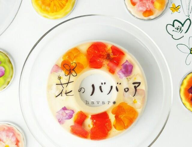 f:id:sayanokuni:20170522165534j:image