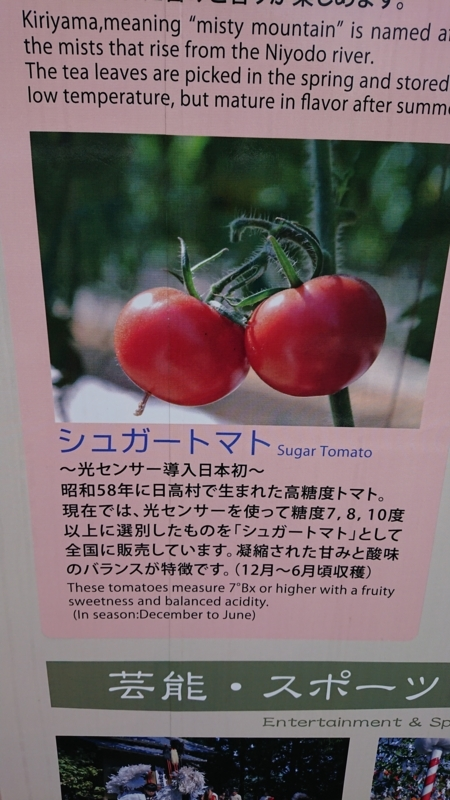 f:id:sayanokuni:20170911225134j:plain