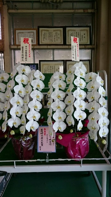 f:id:sayanokuni:20180915170111j:image