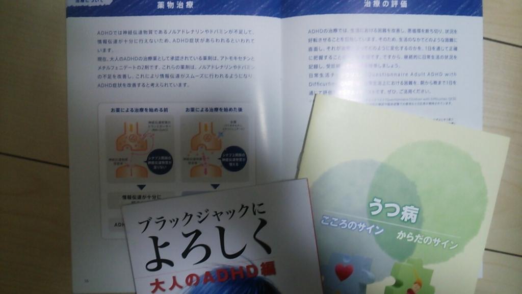 f:id:sayashi:20160415180035j:plain