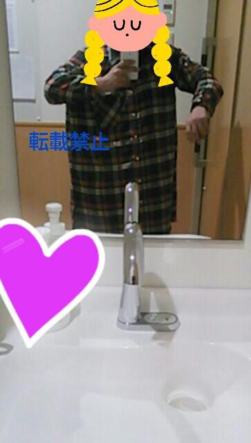 f:id:sayashi:20170204135353j:plain