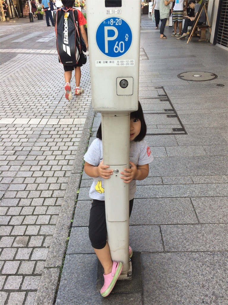 f:id:sayashiyashi:20160913201434j:image