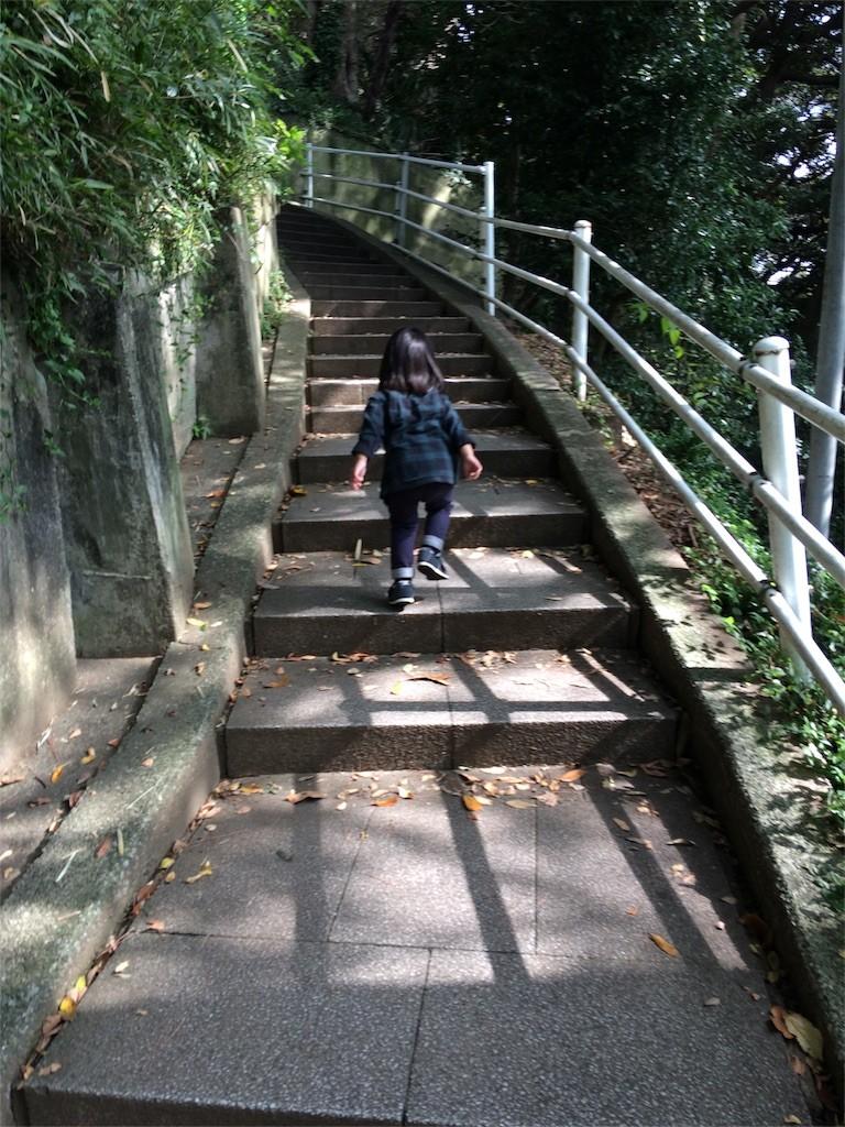 f:id:sayashiyashi:20161027214401j:image