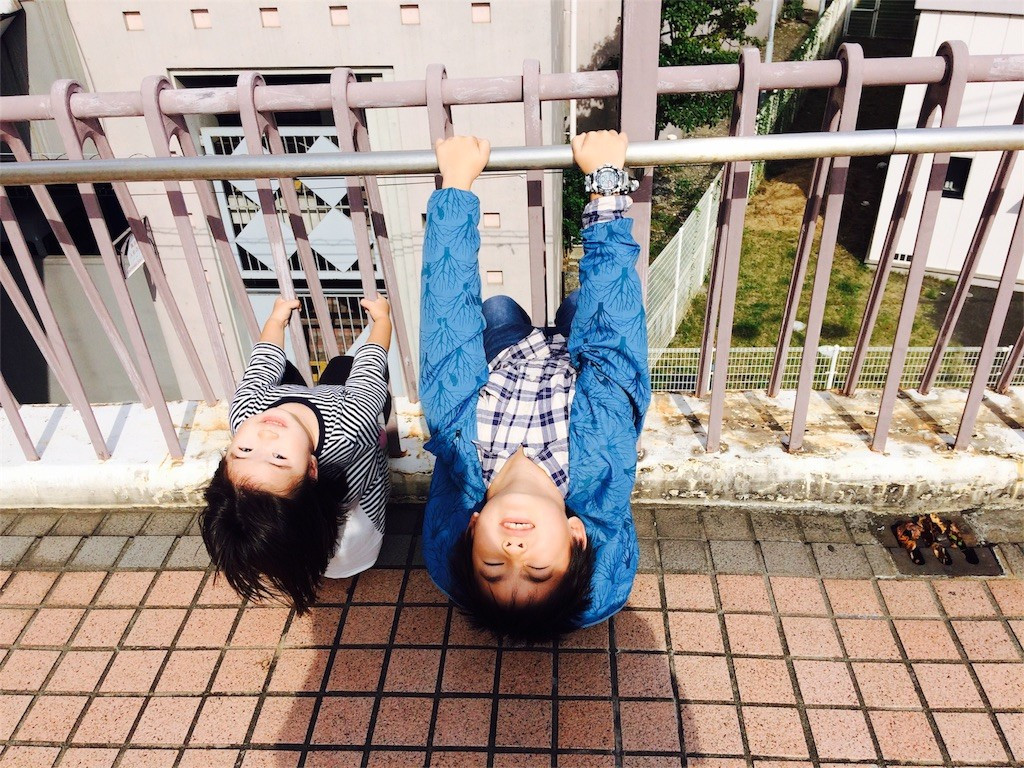 f:id:sayashiyashi:20161027214426j:image