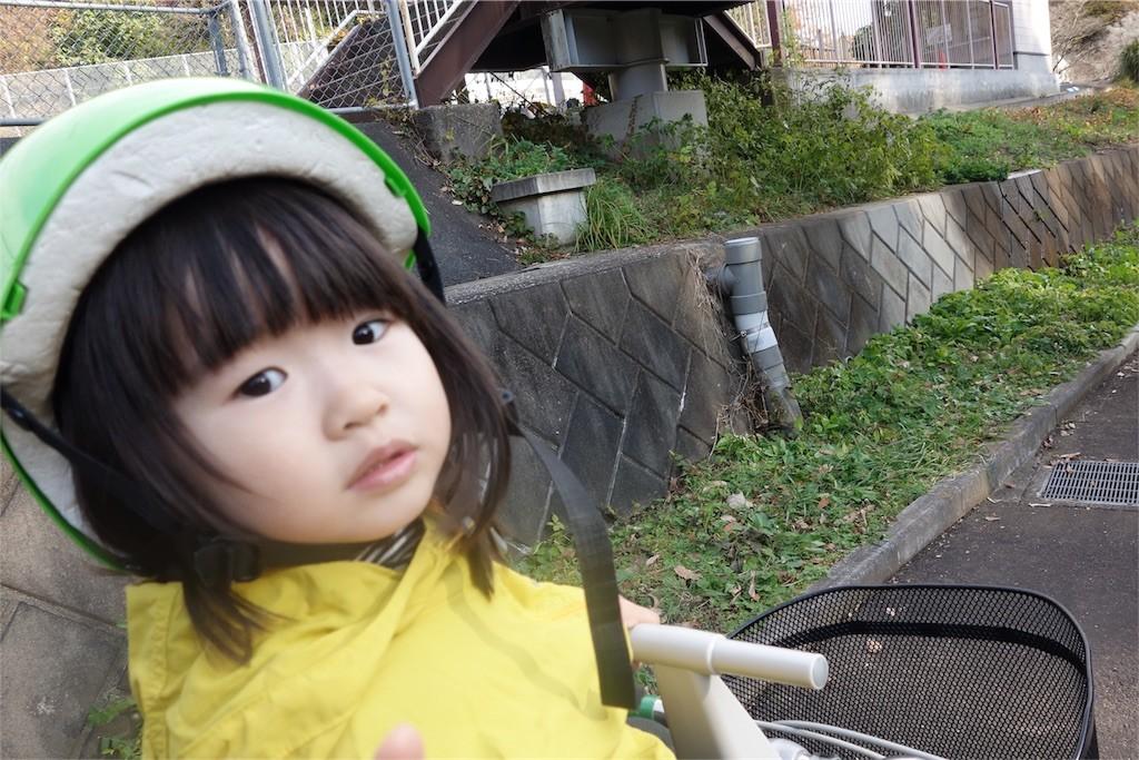 f:id:sayashiyashi:20161205151736j:image