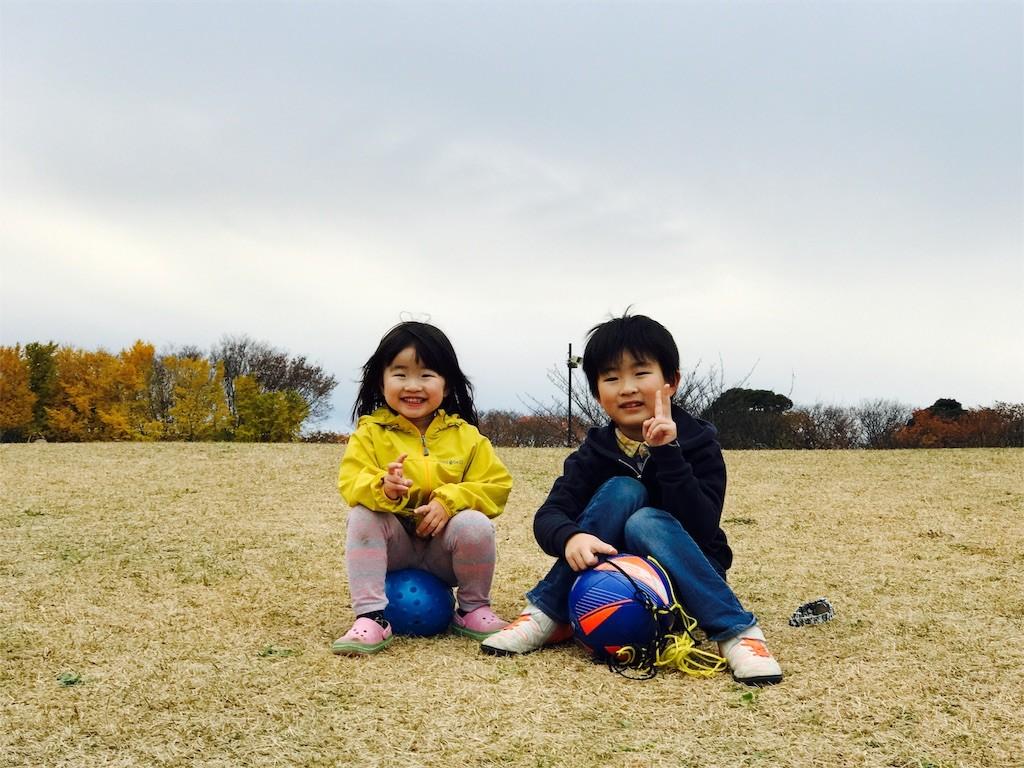 f:id:sayashiyashi:20161214093331j:image