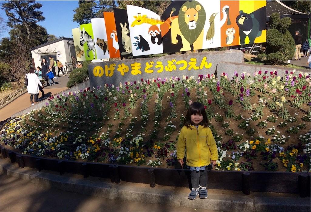 f:id:sayashiyashi:20170206144020j:image