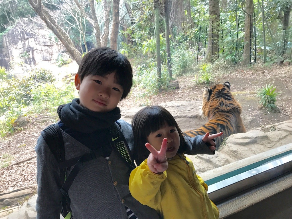f:id:sayashiyashi:20170308162958j:image