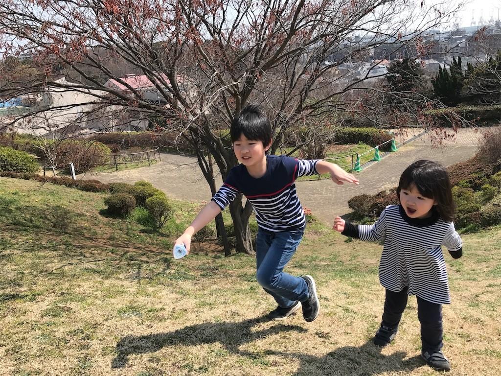 f:id:sayashiyashi:20170402205419j:image