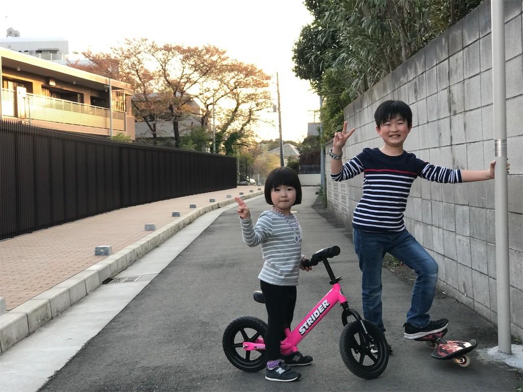f:id:sayashiyashi:20170428190158j:image