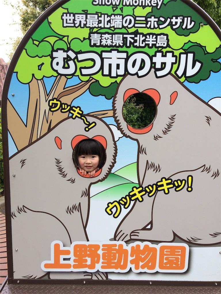 f:id:sayashiyashi:20170428220209j:image