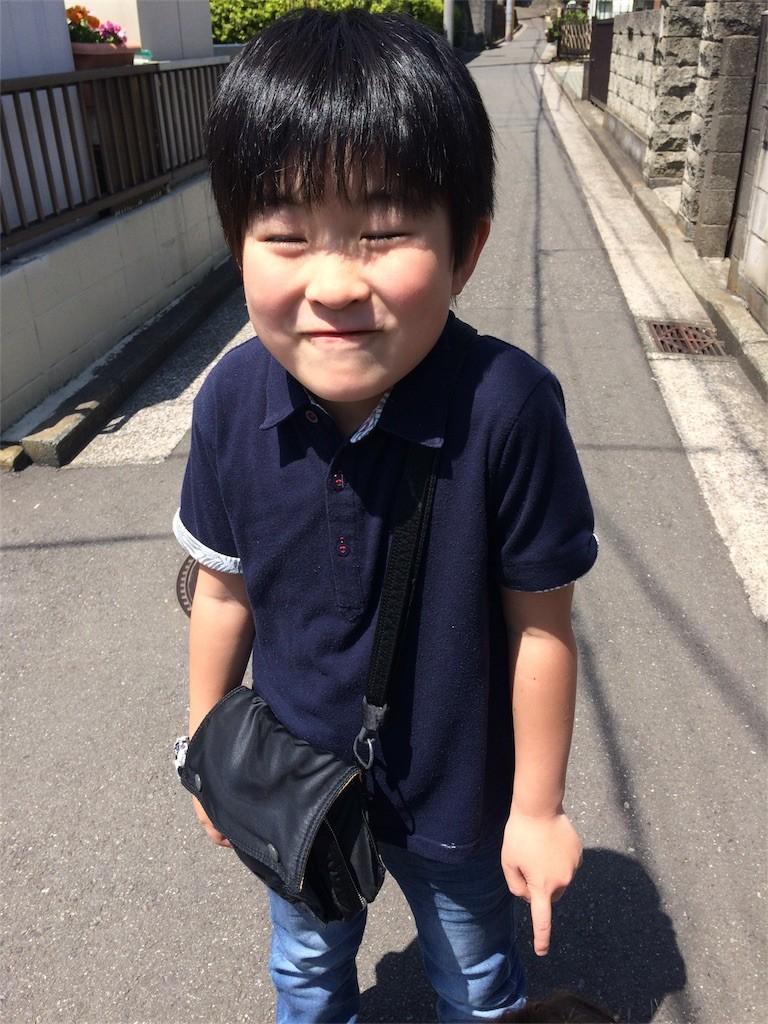 f:id:sayashiyashi:20170429193233j:image