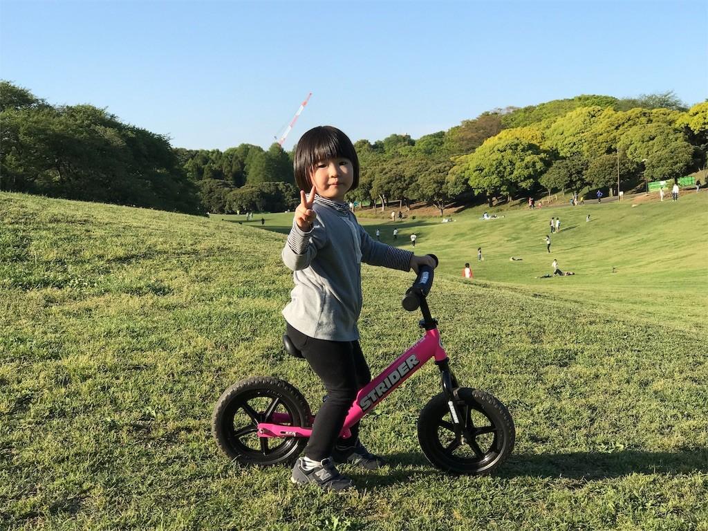 f:id:sayashiyashi:20170516094948j:image