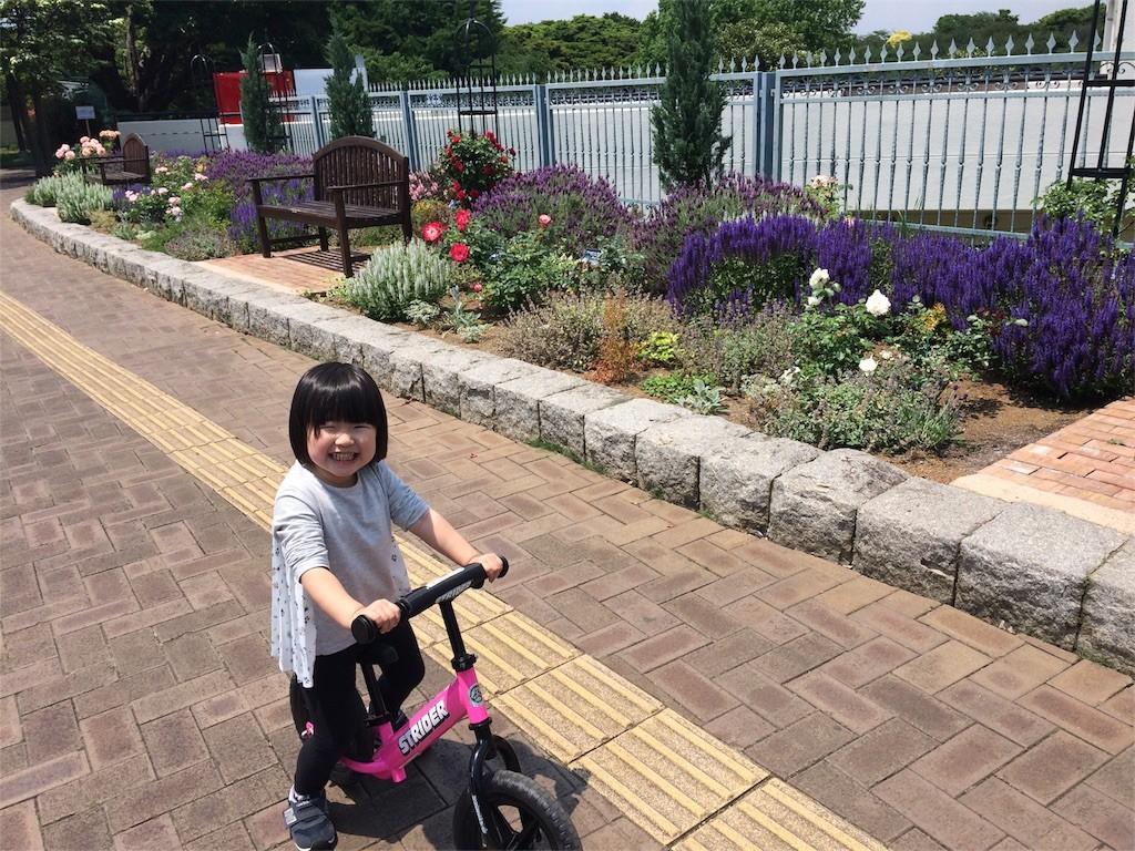 f:id:sayashiyashi:20170518154935j:image