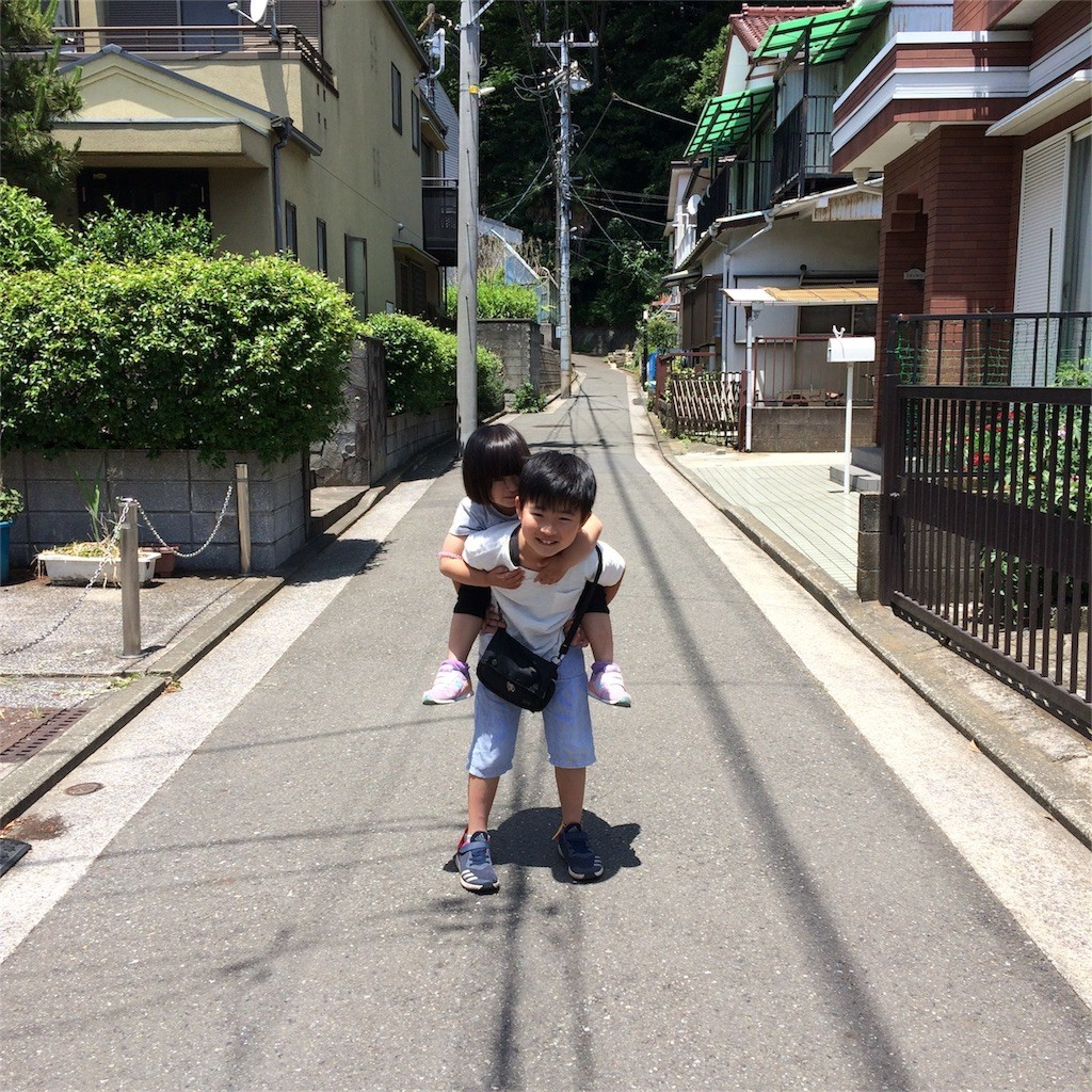 f:id:sayashiyashi:20170609223613j:image