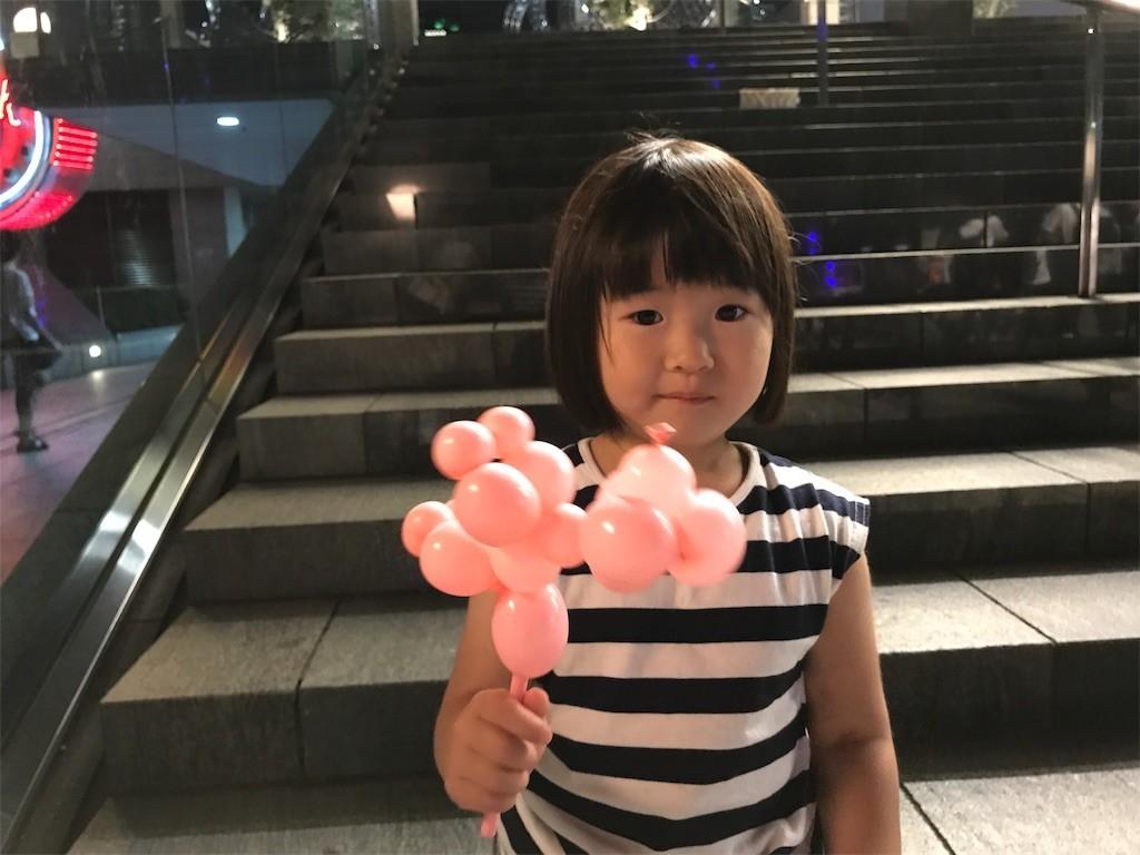 f:id:sayashiyashi:20170626132128j:image
