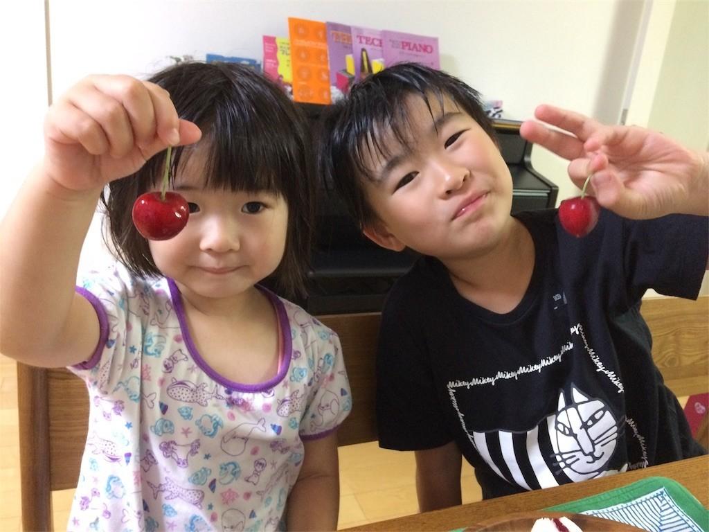 f:id:sayashiyashi:20170712093626j:image