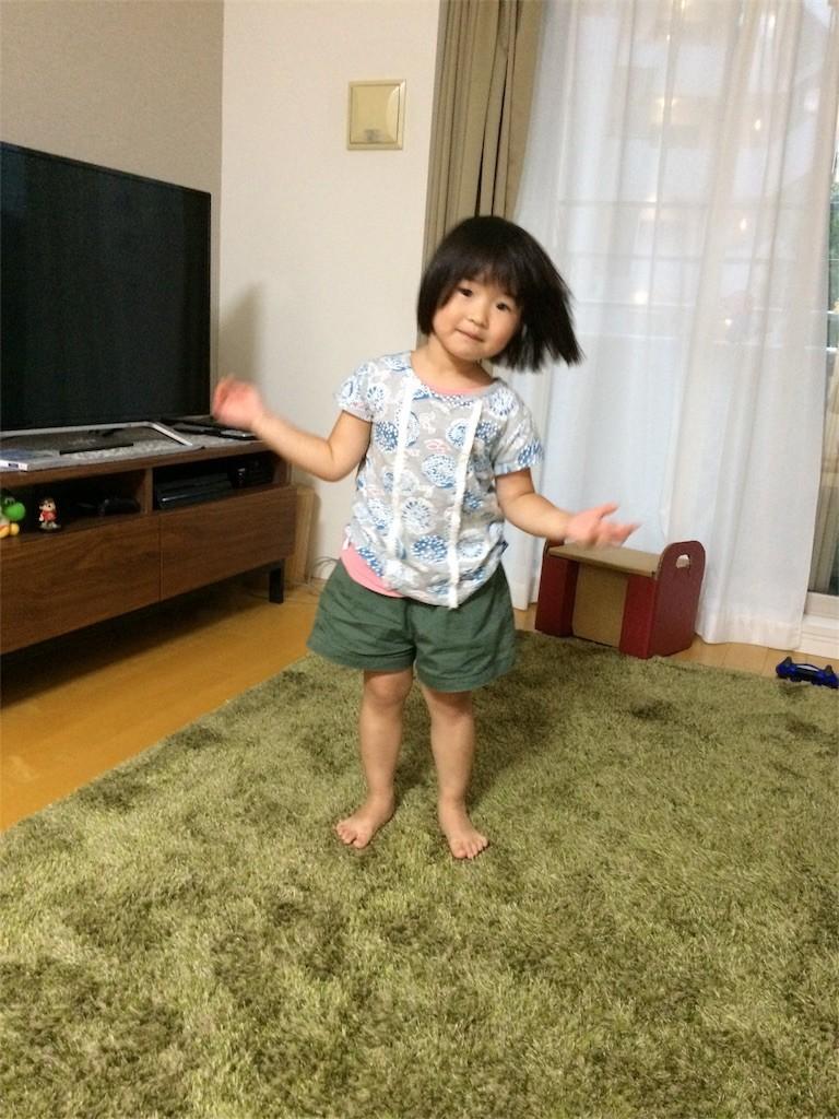 f:id:sayashiyashi:20170805112154j:image
