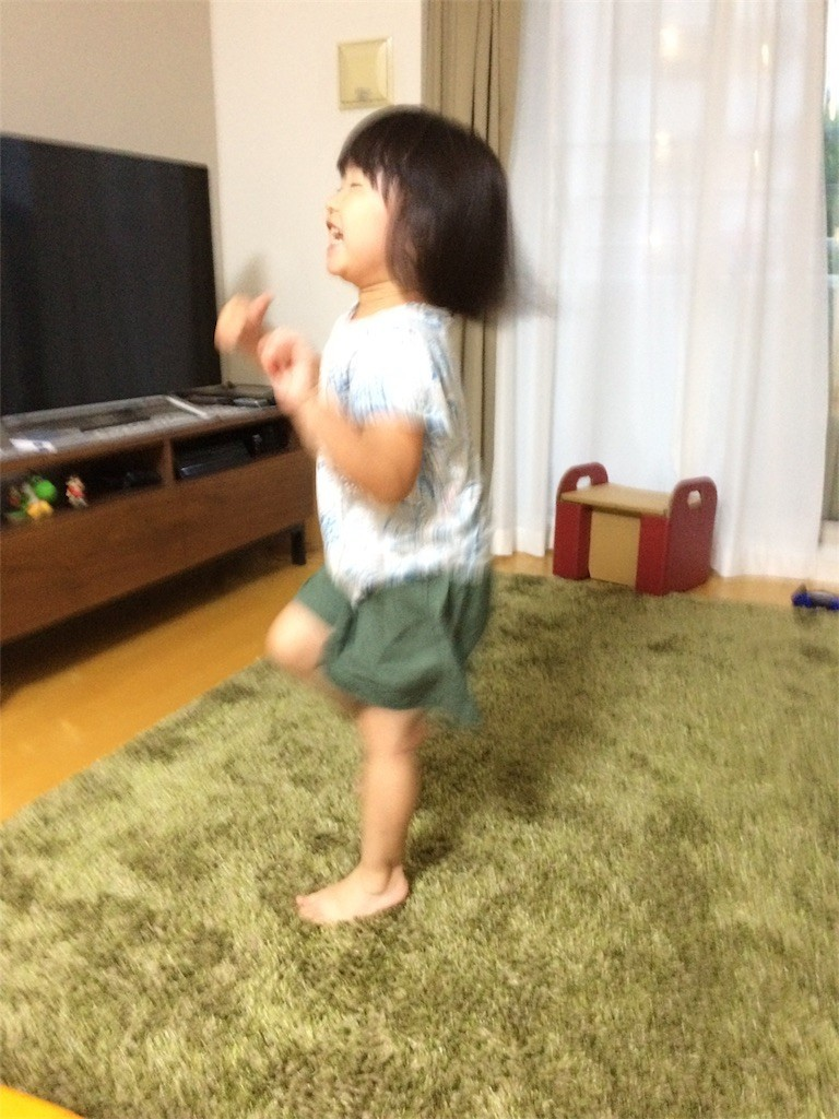 f:id:sayashiyashi:20170805133610j:image