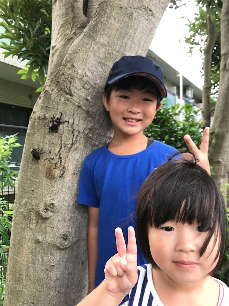 f:id:sayashiyashi:20170812101011j:image