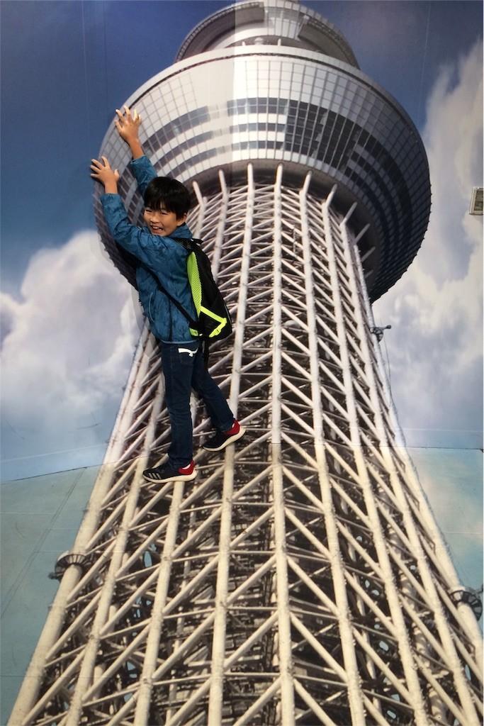 f:id:sayashiyashi:20171103152534j:image