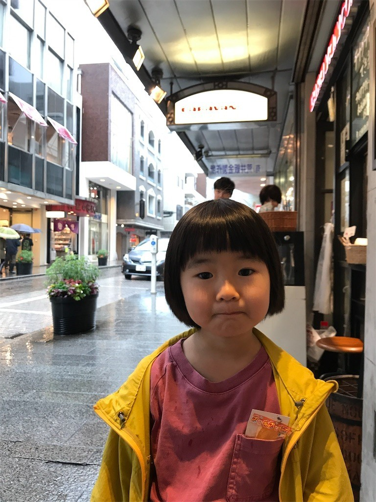 f:id:sayashiyashi:20171103152716j:image