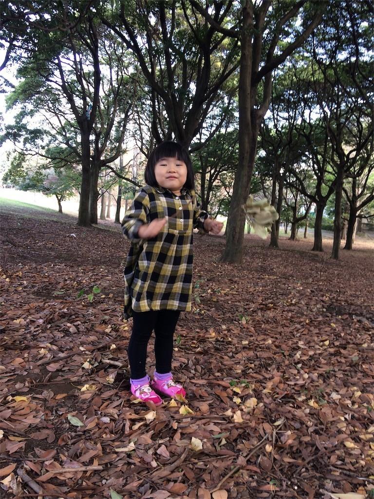 f:id:sayashiyashi:20171124224659j:image
