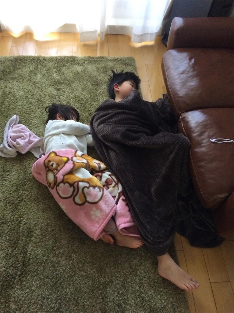 f:id:sayashiyashi:20171226131010j:image