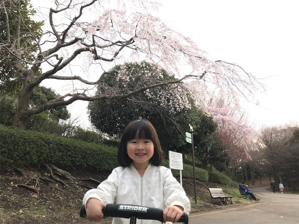 f:id:sayashiyashi:20180326010229j:image