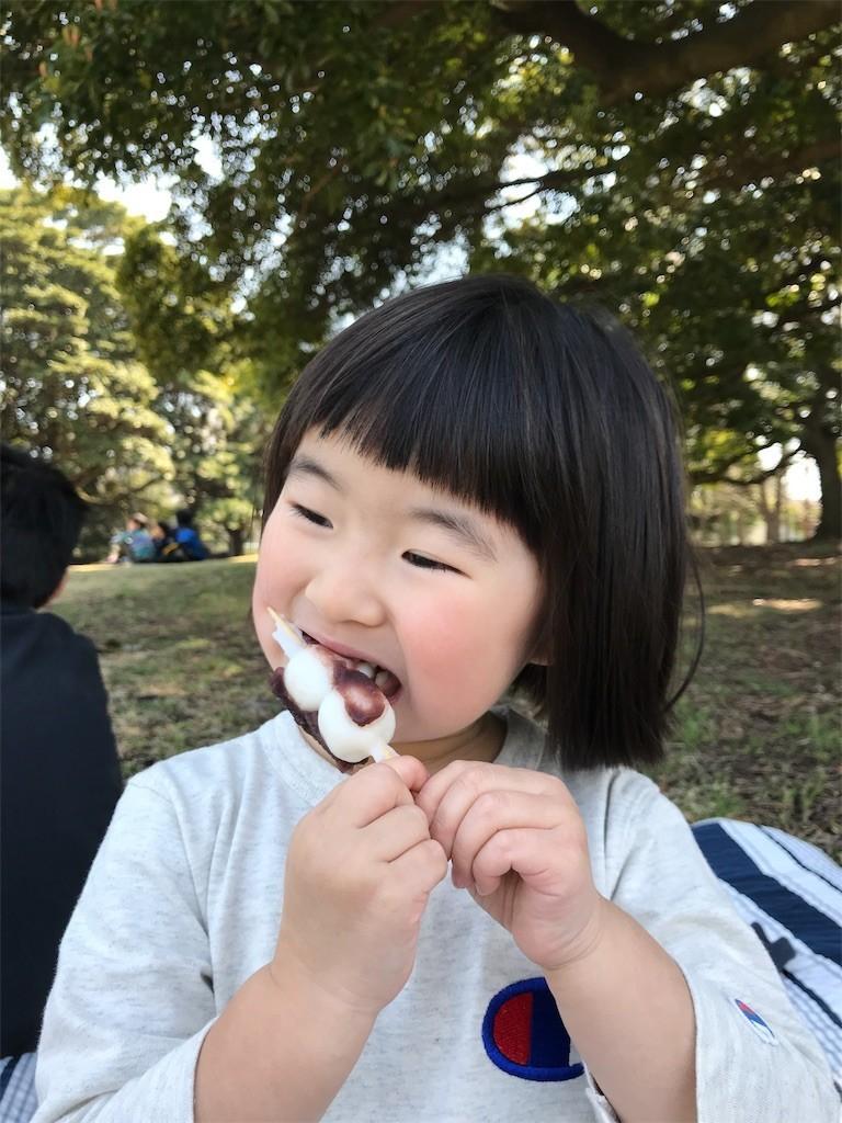 f:id:sayashiyashi:20180407063337j:image