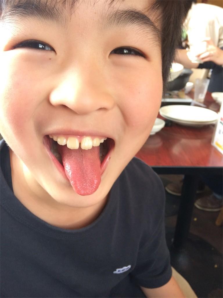 f:id:sayashiyashi:20180418093919j:image