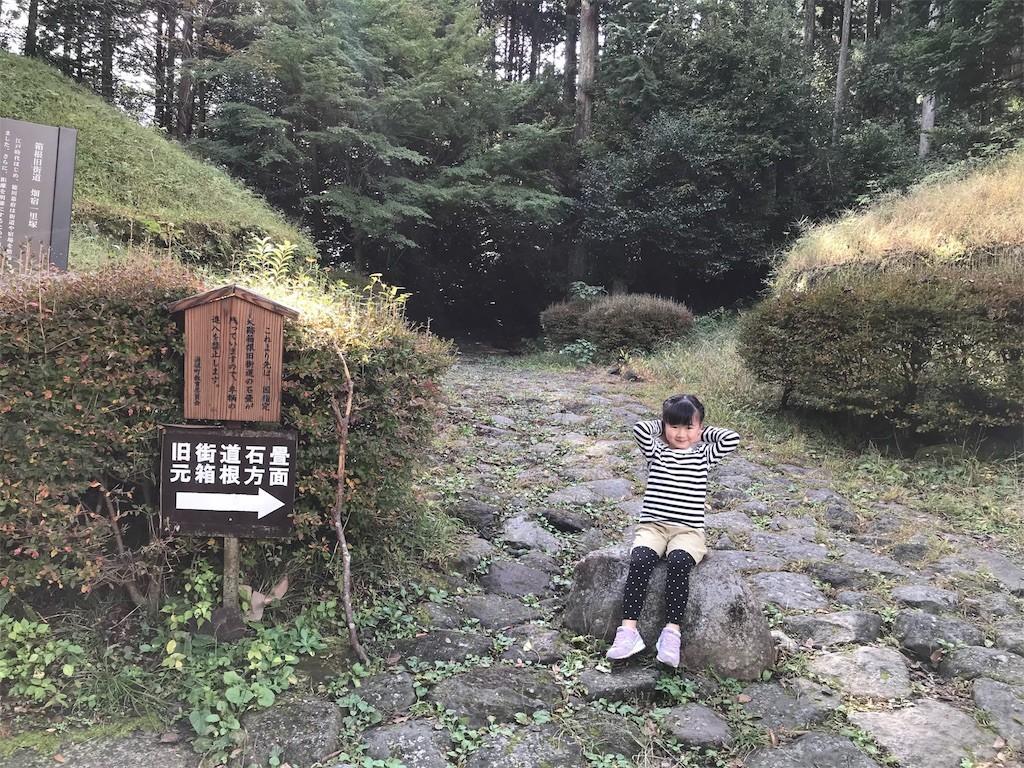 f:id:sayashiyashi:20181030231611j:image