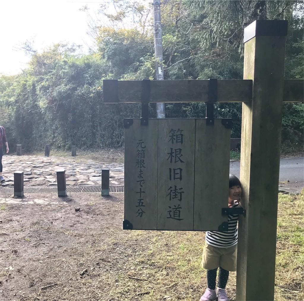 f:id:sayashiyashi:20181031131117j:image