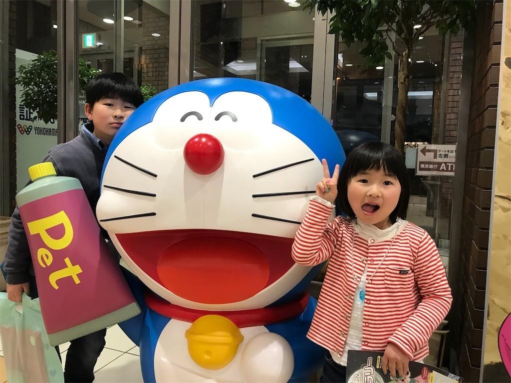 f:id:sayashiyashi:20190329231417j:image