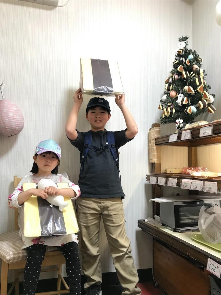 f:id:sayashiyashi:20190429080441j:image