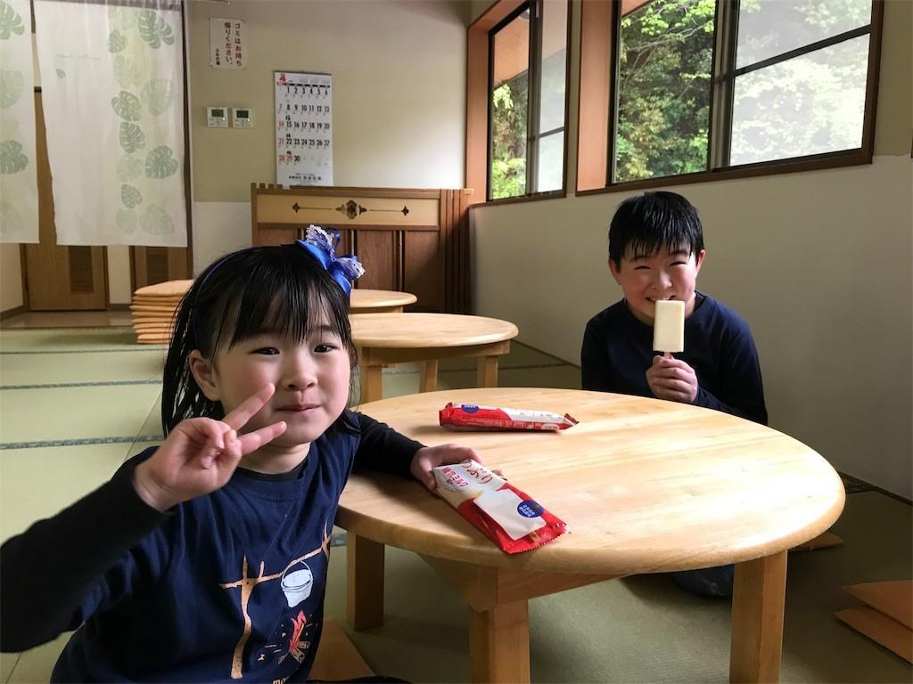 f:id:sayashiyashi:20190512112922j:image