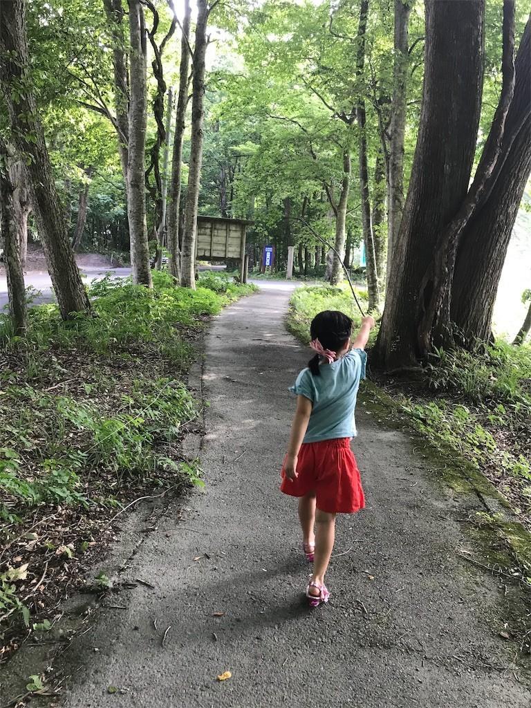 f:id:sayashiyashi:20190828144741j:image