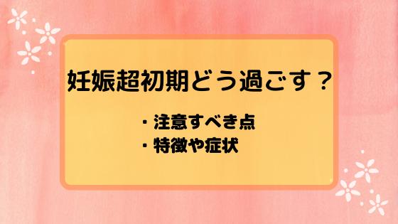 f:id:sayoMAMA:20200304092728p:plain