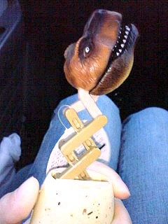 恐竜パクパク