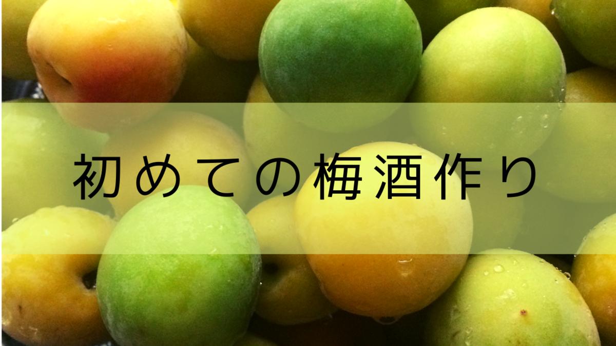 f:id:sayori34:20190627184603p:plain