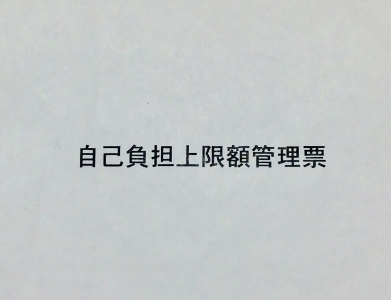 f:id:sayu71:20180403205205j:plain