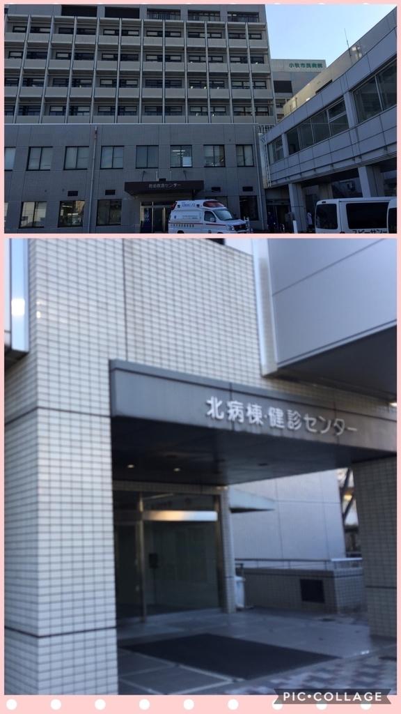f:id:sayuri6:20190130165214j:plain