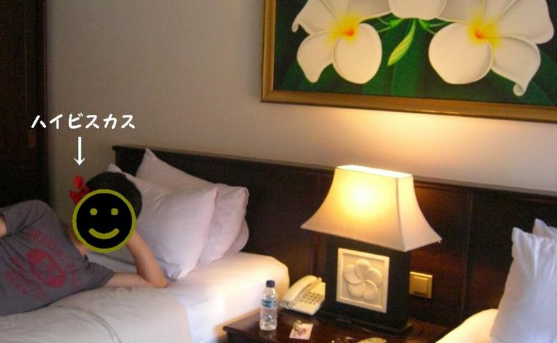 f:id:sayuri_4413:20101201172112j:image