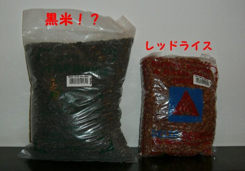 f:id:sayuri_4413:20101203151148j:image