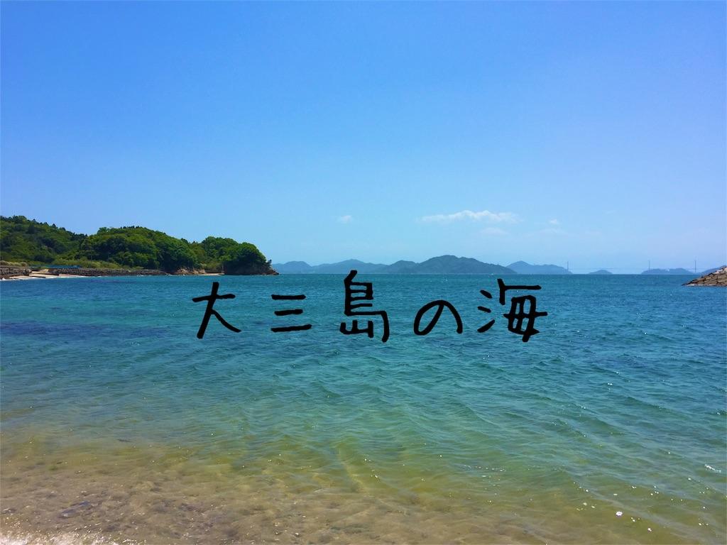 f:id:sayurice:20160504231531j:image