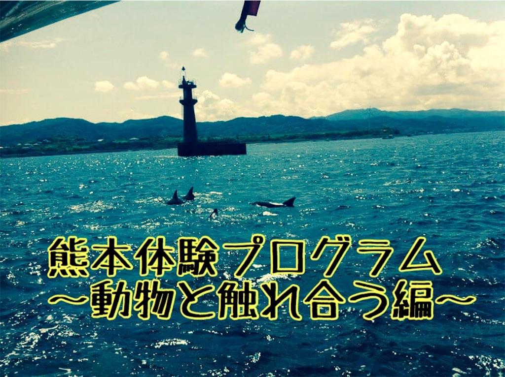 f:id:sayurice:20160708144533j:image